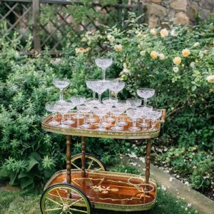 Bar Cart rental One Fancy Fox